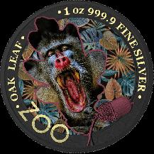 The Oak Leaf - Zoo Series - Mandrill