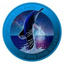 Australia Spinner Dolphin